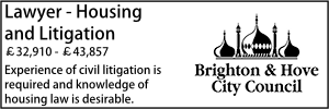 Brighton Nov 20 Lawyer Housing Litigation