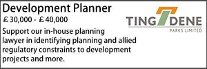 Tingdene March 20 Development Planner
